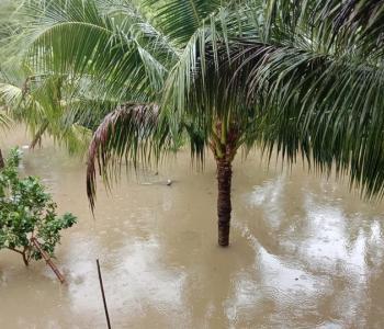 Ninh Thuận mưa lớn ngập lụt nhiều nơi